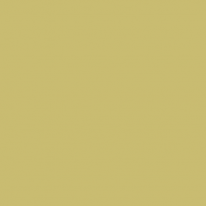 Image of the color dark yellow